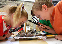 (Wednesday, March 28, 2007)-Lillie Kaempfe, 5, left, Shelby Walther, 5, center, and Grant Kite, 5, right, study birds' nests through magnifying glasses.