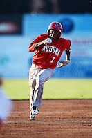 Auburn Doubledays outfielder Narcisco Mesa #1 during a game against the Batavia Muckdogs on June 18, 2013 at Dwyer Stadium in Batavia, New York.  Batavia defeated Auburn 10-2.  (Mike Janes/Four Seam Images)
