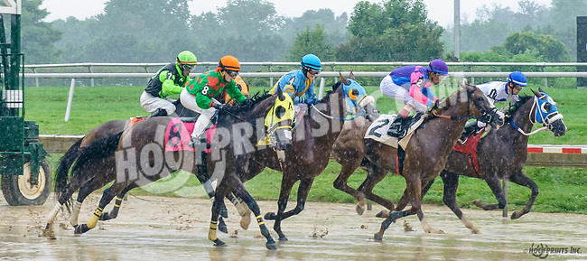 Patriotic Endeavor winning at Delaware Park on 7/6/17