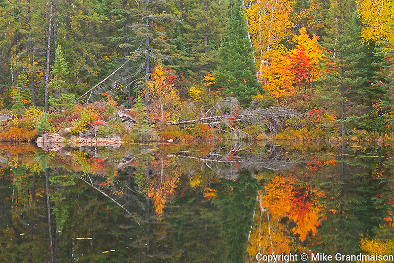 Reflection of autumn colors along the Vermilion River in the Sudbury District. The river flows into Lake Huron<br />