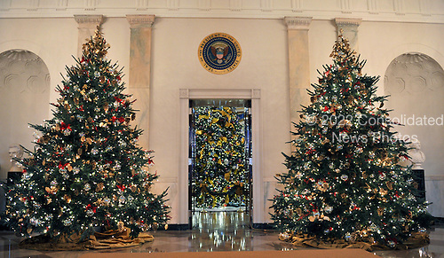 Washington, DC - December 2, 2009 -- Wide view of the White House Christmas decorations in the Cross Hall of the White House looking from the North door to the Blue Room in Washington, D.C. on Wednesday, December 2, 2009..Credit: Ron Sachs / CNP.(RESTRICTION: NO New York or New Jersey Newspapers or newspapers within a 75 mile radius of New York City)