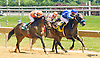 Heady Creek winning at Delaware Park on 6/27/16