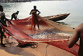 Ninde, Tanzania. Fishermen hauling in their nets on the shores of Lake Tanganyika with a good catch of silvery fish.