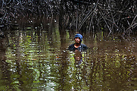 A Colombian boy stands in the water of a shallow channel in the mangrove swamps on the Pacific coast, Colombia, 12 June 2010. Deep in the impenetrable labyrinth of mangrove swamps on the Pacific seashore, hundreds of people struggle everyday, searching and gathering a tiny shellfish called 'piangua'. Wading through sticky mud among the mangrove tree roots, facing the clouds of mosquitos, they pick up mussels hidden deep in mud, no matter of unbearable tropical heat or strong rain. Although the shellfish pickers, mostly Afro-Colombians displaced by the Colombian armed conflict, take a high risk (malaria, poisonous bites,...), their salary is very low and keeps them living in extreme poverty.