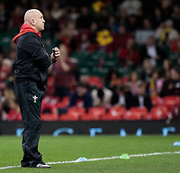 Wales' defence coach Shaun Edwards during the pre match warm up<br /> <br /> Photographer Simon King/CameraSport<br /> <br /> International Rugby Union - 2017 Under Armour Series Autumn Internationals - Wales v Australia - Saturday 11th November 2017 - Principality Stadium - Cardiff<br /> <br /> World Copyright &copy; 2017 CameraSport. All rights reserved. 43 Linden Ave. Countesthorpe. Leicester. England. LE8 5PG - Tel: +44 (0) 116 277 4147 - admin@camerasport.com - www.camerasport.com