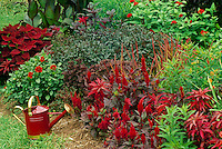 Lovely red garden with red watering can as garden accent, Missouri USA