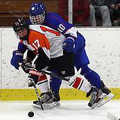 Detroit Catholic Central vs Birmingham Brother Rice, Boys Varsity Hockey, 1/25/13