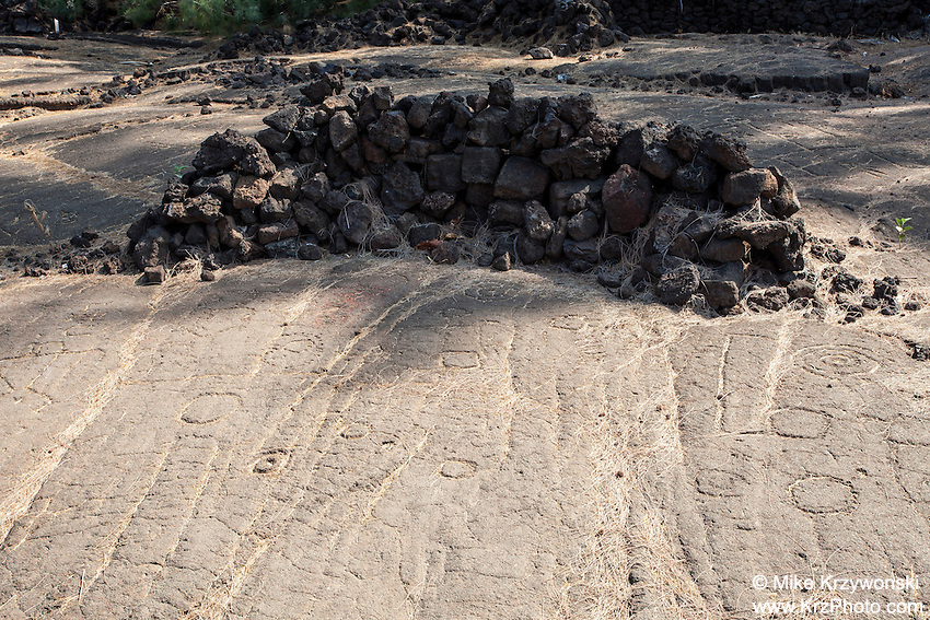 Petroglyphs w/ rock shelter at the Waikoloa Petroglyph Field, Big Island, Hawaii