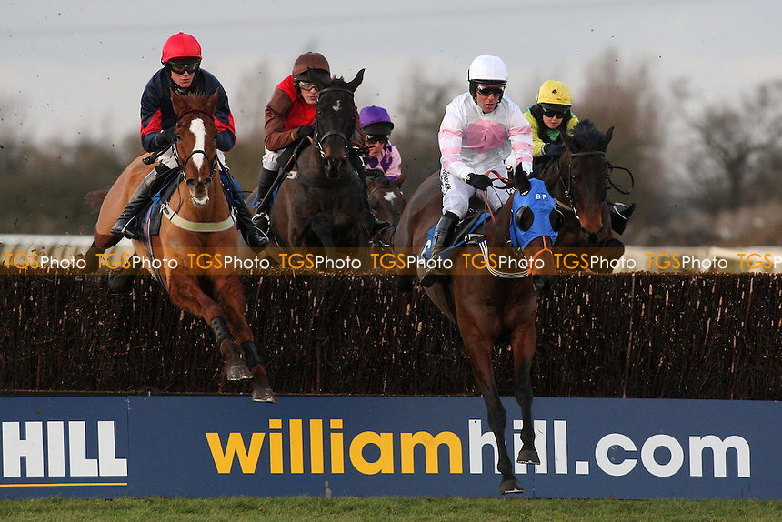 Gemini Jim ridden by Andrew Tinkler leads the field during the Connolly's Red Mills Horsecare Novice's Handicap Chase at Huntingdon Racecourse, Brampton, Cambridgeshire - 27/01/12 - MANDATORY CREDIT: Gavin Ellis/TGSPHOTO - Self billing applies where appropriate - 0845 094 6026 - contact@tgsphoto.co.uk - NO UNPAID USE.