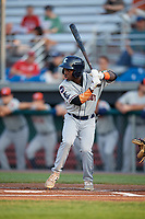 Connecticut Tigers left fielder Ro Coleman (22) at bat during a game against the Auburn Doubledays on August 10, 2017 at Falcon Park in Auburn, New York.  Connecticut defeated Auburn 4-1.  (Mike Janes/Four Seam Images)