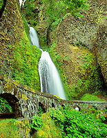 M00394M.tiff   Wahkeena Falls with spring growth. Columbia River Gorge National Scenic Area, Oregon