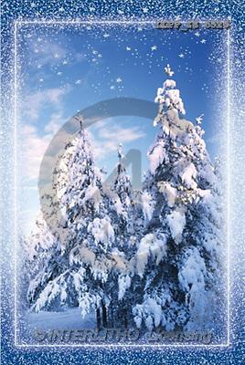 Maira, CHRISTMAS LANDSCAPE, photos(LLPPZS6526,#XL#) Landschaften, Weihnachten, paisajes, Navidad