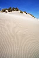 Ripples in sand dune, Piemanson beach,Camargue, France