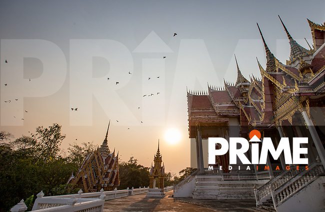 Birds fly above the main temple at Wat Phai Rong Wua, Bang Ta Then, Song Phi Nong District, Suphan Buri, THAILAND on 13 February 2019. Photo by Andy Rowland.