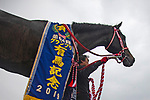 FUNABASHI,JAPAN-DEC 22: Lys Gracieux,ridden by Damian Lane, after winning the Arina Kinen (The Grand Prix) at Nakayama Racecourse on December 22,2019 in Funabashi,Chiba,Japan. Kaz Ishida/Eclipse Sportswire/CSM