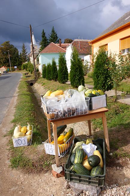 Small stall selling pumpkins outside a house in K?szegszerdahely (Koszegszerdahely) nr Velem , Hungary