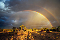 Double rainbow at sunset over Kalahari landscape with shadow of photographer