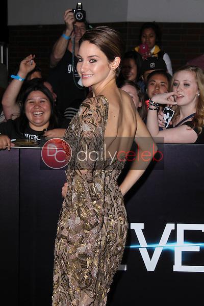 "Shailene Woodley<br /> at the ""Divergent"" Los Angeles Premiere, Regency Bruin Theatre, Westwood, CA 03-18-14<br /> Dave Edwards/DailyCeleb.com 818-249-4998"