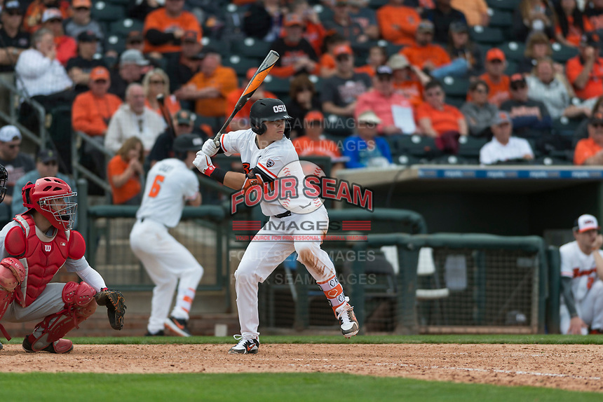 Oregon State Beavers designated hitter Troy Claunch (17) at bat during a game against the New Mexico Lobos on February 15, 2019 at Surprise Stadium in Surprise, Arizona. Oregon State defeated New Mexico 6-5. (Zachary Lucy/Four Seam Images)