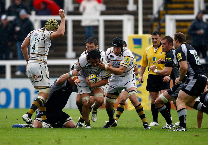 Photo: Richard Lane/Richard Lane Photography. Newcastle Falcons v London Wasps. Aviva Premiership. 02/10/2011. Wasps' Jonathan Poff attacks.