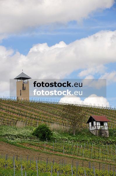 Weinbergsturm und Weinbergshaus bei Vendersheim