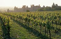 Europe/France/Languedoc-Roussillon/11/Aude/Carcassonne: le vignoble et la cité