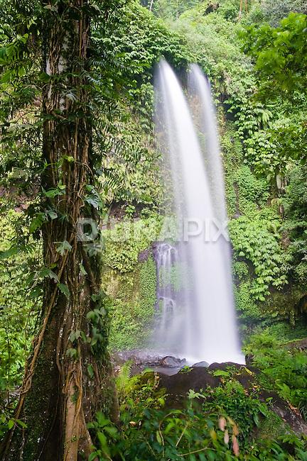 Lombok Waterfall, near Mount Rinjani