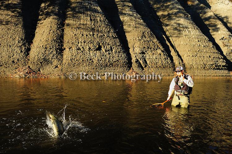 FLY FISHING FOR STEELHEAD IN ELK CREEK