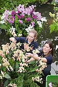 LONDON, ENGLAND - Royal Botanic Gardens, Kew, Tropical Extravaganza Festival 2011, Kew Diploma Students Anne Rostek and Tsuyeko Western