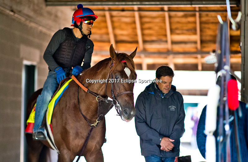 LOUISVILLE, KENTUCKY - MAY 02: Irish War Cry and H. Graham Motion walk shed row after exercising in preparation for the Kentucky Derby at Churchill Downs on May 2, 2017 in Louisville, Kentucky. (Photo by Scott Serio/Eclipse Sportswire/Getty Images)