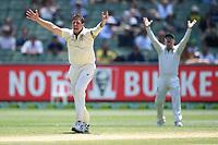 29th December 2019; Melbourne Cricket Ground, Melbourne, Victoria, Australia; International Test Cricket, Australia versus New Zealand, Test 2, Day 4; James Pattinson of Australia appeals for a wicket - Editorial Use