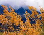 Matanuska Valley   ALASKA