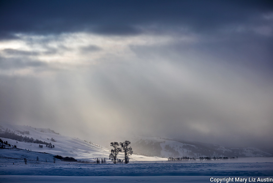 Yellowstone National Park, Wyoming/Montana: Morning light breaking through the clouds in the Lamar Valley in winter