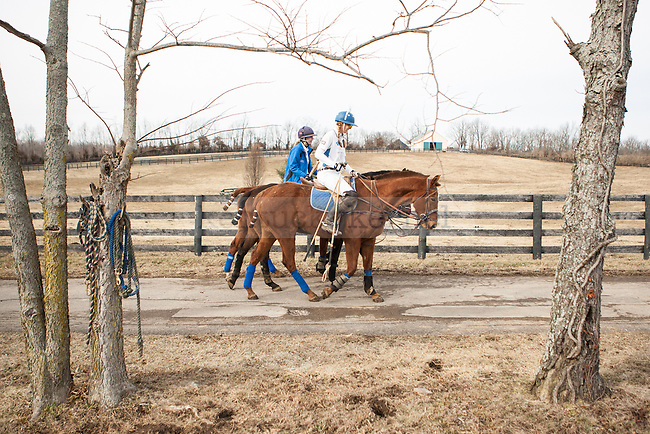Rebecca Kozlowski (left) and Emma Oakley ride to the arena before Saturday's polo match at West Wind Stables on Saturday, January 31, 2015 in Lexington, Ky. Photo by Adam Pennavaria | Staff