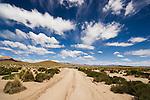 Bolivia, Altiplano, dirt track crossing Altiplano grassland