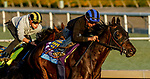 October 27, 2019 : Breeders' Cup Juvenile  entrant Eight Rings, trained by Bob Baffert, exercises in preparation for the Breeders' Cup World Championships at Santa Anita Park in Arcadia, California on October 27, 2019. John Voorhees/Eclipse Sportswire/Breeders' Cup/CSM