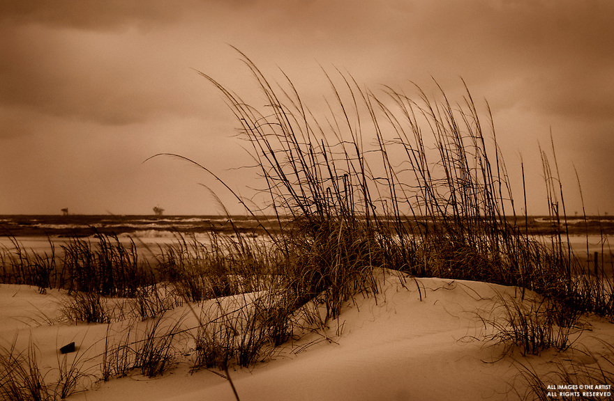 Carmen K. Sisson, Sisson, Dauphin Island, Alabama, beach, sea, ocean, water, peaceful, horizontal