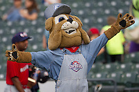 "Round Rock Express mascot ""Spike"" before the Pacific Coast League baseball game against the Oklahoma City Redhawks on April 3, 2014 at the Dell Diamond in Round Rock, Texas. The Redhawks defeated the Express 7-6 in the season opener for both teams. (Andrew Woolley/Four Seam Images)"