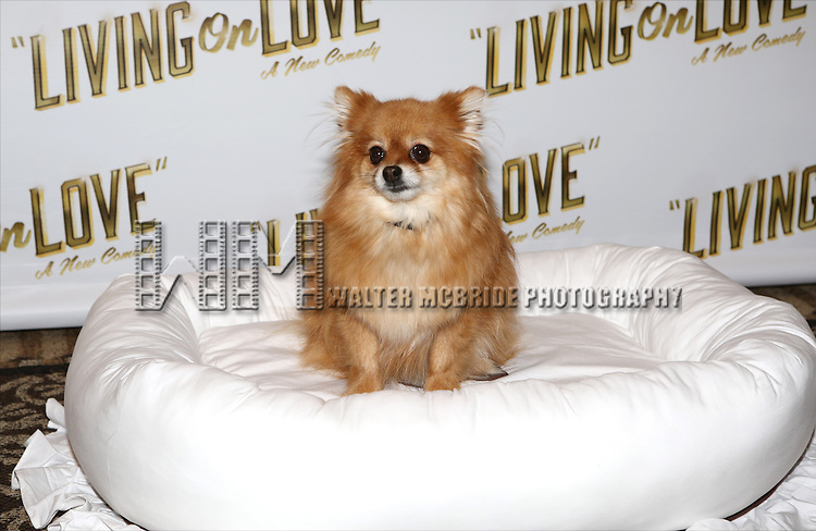 Trixie attends the 'Living on Love' photo call at the Empire Hotel on March 12, 2015 in New York City.