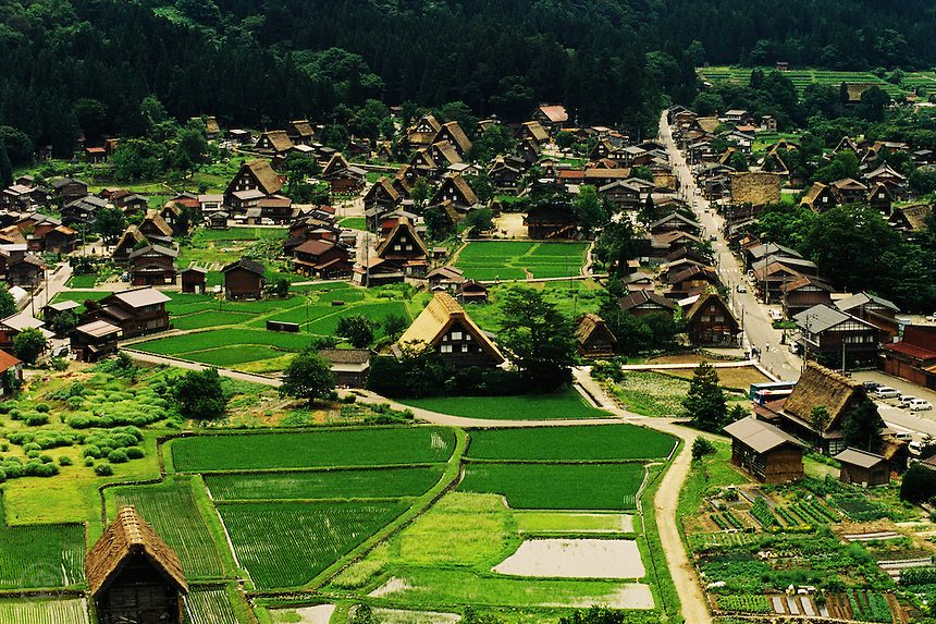 The traditional gassho-zukuri thatched roofs of the village of Shirakawago are dotted amidst rice paddies in mountainous Gifu.