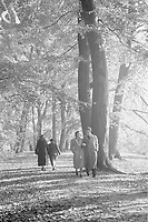 Photo from the NIOD's Huizinga collection. The Haagse Bos, before it was largely cut down for the construction of the fortress Clingendael as part of the 'Atlantic Wall'.