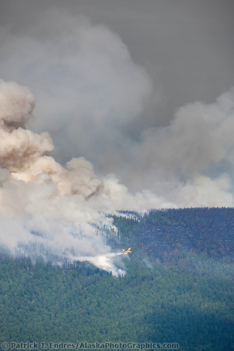 A duck aircraft, otherwise known as a super scooper dumps water to suppress the Hastings wildland forest fire near Murphy Dome north of Fairbanks, Alaska.