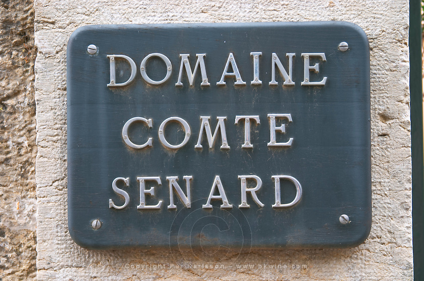 Aloxe Corton, Cote de Beaune, d'Or, Burgundy, France