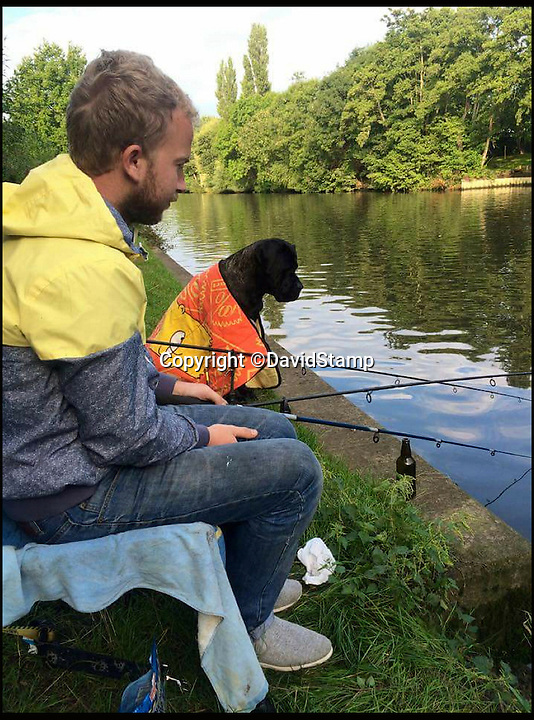 BNPs.co.uk (01202 558833)<br /> Pic: DavidStamp/BNPS<br /> <br /> Steph Snyman's boyfriend David Stamp out fishing.<br /> <br /> This tiny fish is thought be Britain's top tiddler - but for the woman who landed the mighty minnow it will always be the one that got away. <br /> <br /> Steph Snyman, 21, caught the 'titanic' three-spined stickleback but disregarded it because of its size and threw it back after taking a quick photo.<br /> <br /> It was only when she later showed people the picture of the 3ins long specimen that it dawned on her that it was probably bigger than the existing record for a stickleback of 4drams or a quarter of an ounce.
