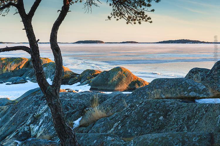 Vinter is vid klippor i skärgården Björnö Ingarö Stockholms skärgård.