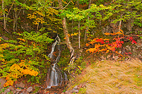 Little waterfall and Acadian forest in autumn foliage<br />