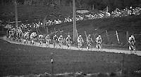 De Ronde van Vlaanderen 2012