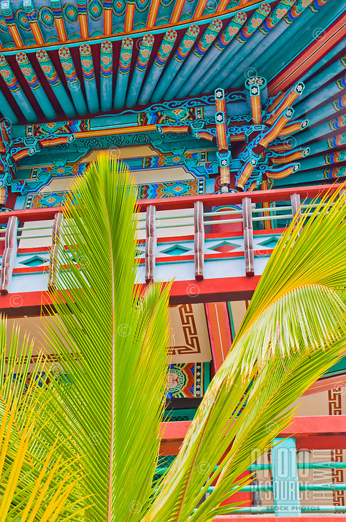 Palm fronds in front of Mu-Ryang-Sa (or Broken Ridge Temple), a Korean Buddhist temple in Palolo Valley, Honolulu, O'ahu.