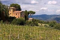 Italien, Umbrien, Weingut bei Orvieto | Italy, Umbria, wine growing estate near Orvieto