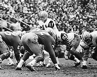Frank Cosintino HamiltonTiger Cats quarterback 1965 Grey Cup. Copyright photograph Ted Grant/